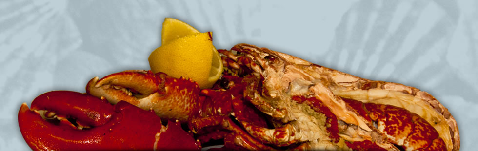 Header image showing a selection roasted platter, roasted shellfish and lobster mayonnaise