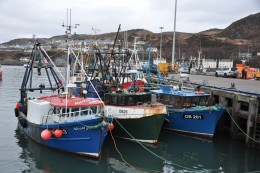 Boats Winter in Mallaig : Photo Oban Times